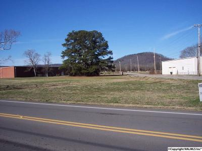 Scottsboro AL Commercial Lots & Land For Sale: $164,900