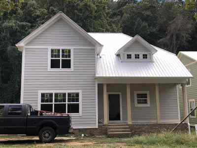 Guntersville Single Family Home For Sale: 1571 Patterson Street