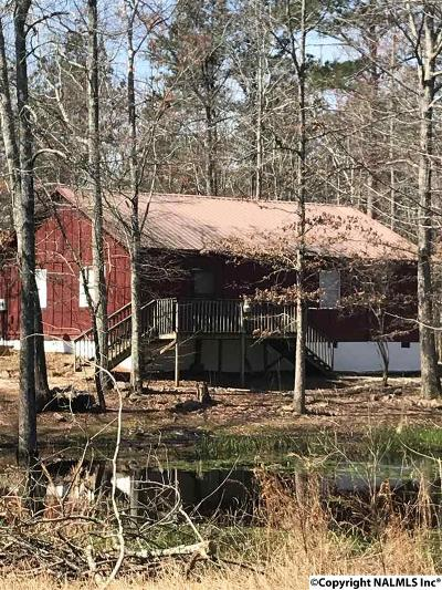 Fort Payne Single Family Home For Sale: 737 County Road 427