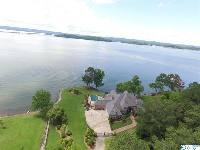 Guntersville Single Family Home For Sale: 1501 Signal Point Road
