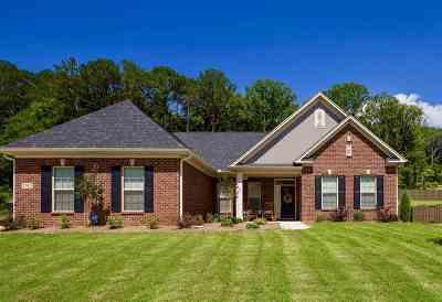 Owens Cross Roads Single Family Home For Sale: 7012 Jane Elizabeth Drive