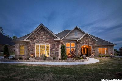 Single Family Home For Sale: 107 Kelly Valley Lane