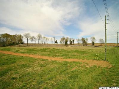 Meridianville Residential Lots & Land For Sale: Meridianville Bottom Road