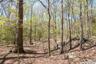 Huntsville Residential Lots & Land For Sale: 14000 Stonehaven Road