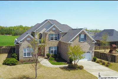 Single Family Home For Sale: 231 Meadow Wood Drive