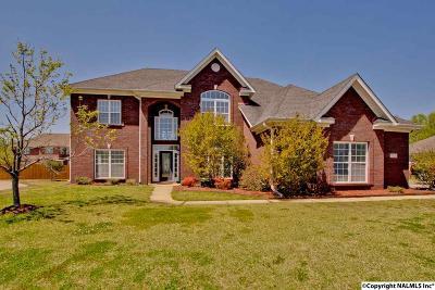 Owens Cross Roads Single Family Home For Sale: 7020 Southcreek Drive