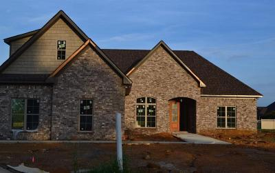 Limestone County, Madison County Single Family Home For Sale: 17191 Lochton Drive