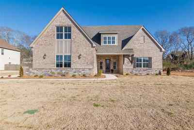 Single Family Home For Sale: 3027 Ginn Point Road