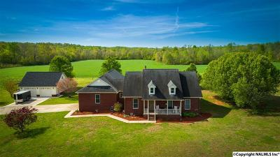 Hazel Green Single Family Home For Sale: 1061 Mulberry Road