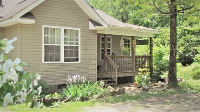 Fort Payne Single Family Home For Sale: 2101t Tony Creek Drive