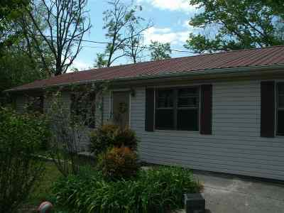 Flat Rock, Fort Payne, Henagar, Ider, Mentone, Pisgah, Rainsville, Sylvania, Valley Head Single Family Home For Sale: 122 Mississippi Street