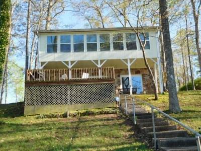 Leesburg Single Family Home For Sale: 685 Embos Island Street