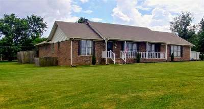 Single Family Home For Sale: 26850 Elkins Road