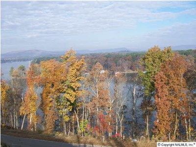 Scottsboro Residential Lots & Land For Sale: 87 Monte Sano Drive #Lot 87
