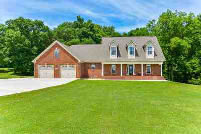 Single Family Home For Sale: 13067 Brian Hill Road