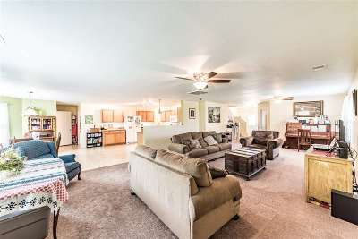 Single Family Home For Sale: 115 Sagebrook Drive