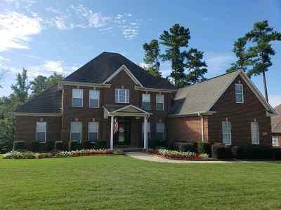 New Market Single Family Home For Sale: 217 Riverwalk Trail