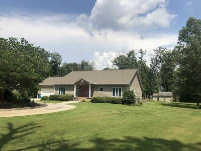 Guntersville Single Family Home For Sale: 197 Morningside Drive