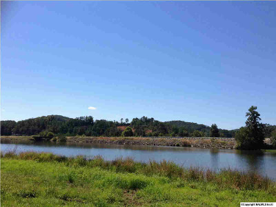 Cherokee County Residential Lots & Land For Sale: 4 State Highway 273