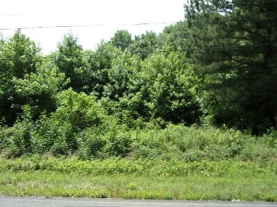 Hazel Green Residential Lots & Land For Sale: John Hicks Road
