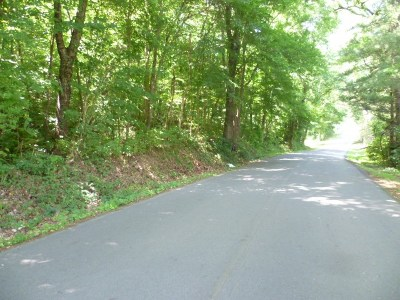 Fort Payne AL Residential Lots & Land For Sale: $78,000