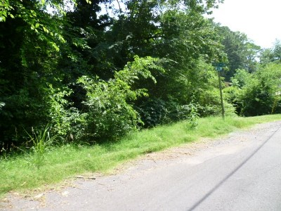 Fort Payne AL Residential Lots & Land For Sale: $3,000