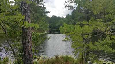 Flat Rock Residential Lots & Land For Sale: County Road 81
