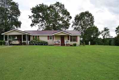 Scottsboro Single Family Home For Sale: 1036 Gizzard Point Road