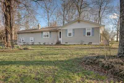 Scottsboro Single Family Home For Sale: 40 Ron Davis Drive