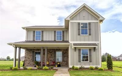Decatur Single Family Home For Sale: 2029 Sarah Lane