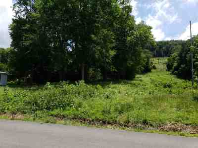 Residential Lots & Land For Sale: 225 SE Lincoln Avenue
