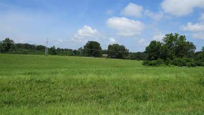 Guntersville Residential Lots & Land For Sale: Georgia Mountain Road