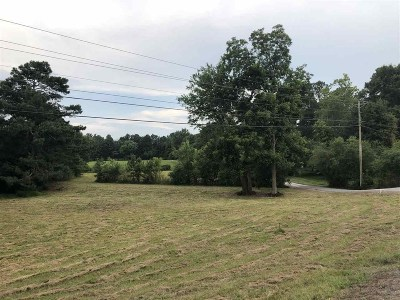 Marshall County, Jackson County Residential Lots & Land For Sale: 1700 Guntersville Road