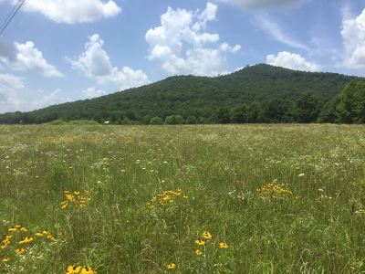 Marshall County, Jackson County Residential Lots & Land For Sale: 403 County Road 147