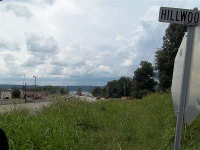 Guntersville Residential Lots & Land For Sale: Hillwood Drive