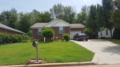 Madison County, Limestone County Single Family Home For Sale: 412 Skyview Drive