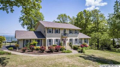 Fort Payne Single Family Home For Sale: 957 NE Mountain Drive