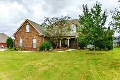 Single Family Home For Sale: 213 Ash Ridge Drive