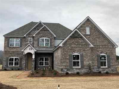 Owens Cross Roads Single Family Home For Sale: 3036 Ginn Point Road