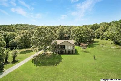 Marshall County, Jackson County Single Family Home For Sale: 4121 Cathedral Caverns Road