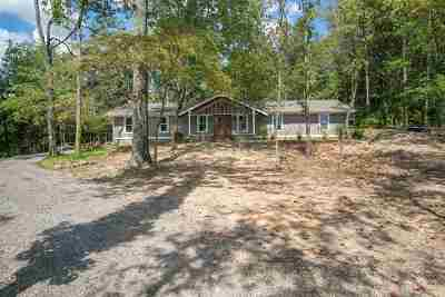 Scottsboro Single Family Home For Sale: 1039 Snodgrass Road