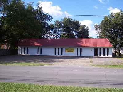 Scottsboro AL Commercial For Sale: $239,500