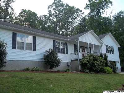 Marshall County, Jackson County Single Family Home For Sale: 2250 Hickory Hill Drive
