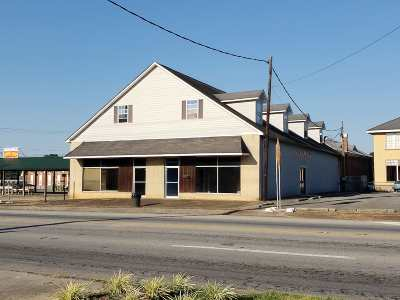 Arab Commercial For Sale: 321 Main Street