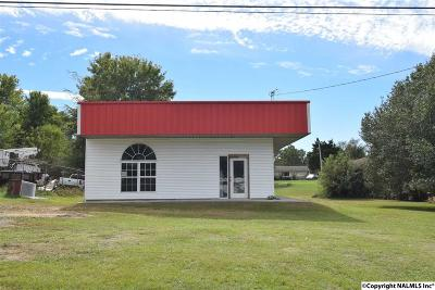 Commercial For Sale: 12857 Us Highway 431