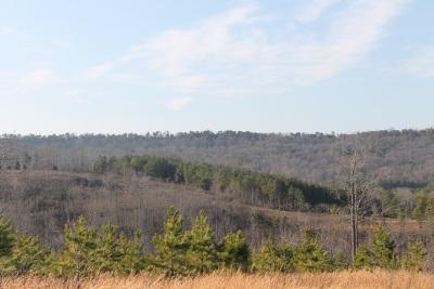 Dekalb Residential Lots & Land For Sale: Lot 20 Foxfield Drive
