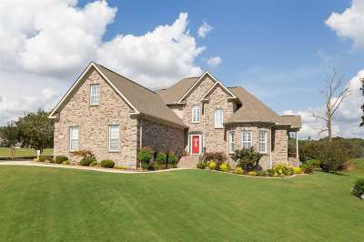 Single Family Home For Sale: 279 Summit Lakes Drive