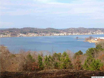 Guntersville Residential Lots & Land For Sale: Woodvue Road