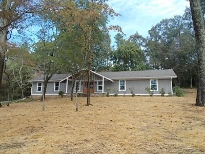Scottsboro Single Family Home For Sale: 1039 Snodgrass Road