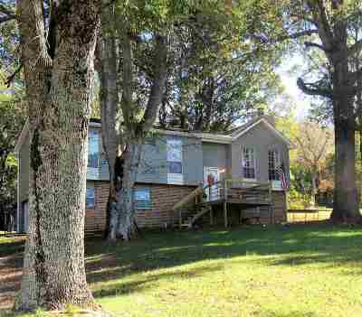 Fort Payne Single Family Home For Sale: 4303 Godfrey Avenue